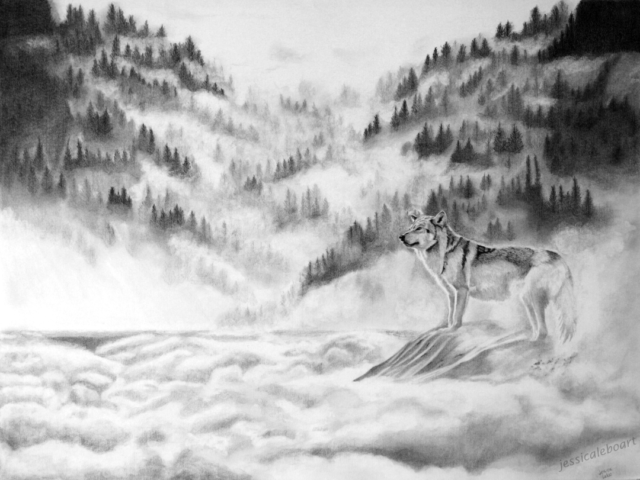 fine art graphite pencil drawing animal wolf in fog mountains