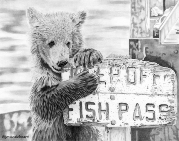 fine art graphite pencil drawing animal cute bear cub