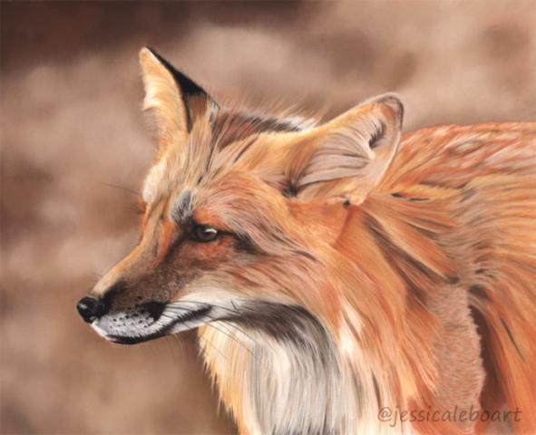 pastel animal realism drawing wildlife art painting