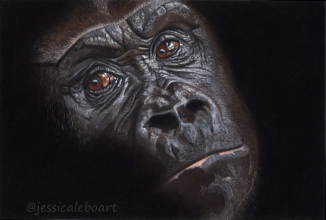 wildlife art painting realism pastel drawing