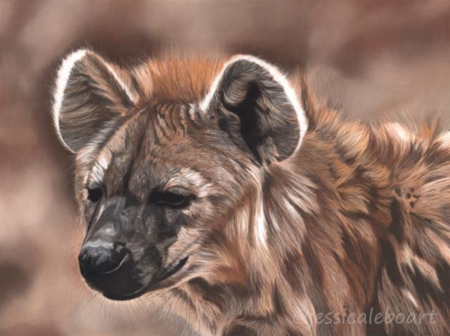 wildlife pastel realism drawing artwork hyena african animals