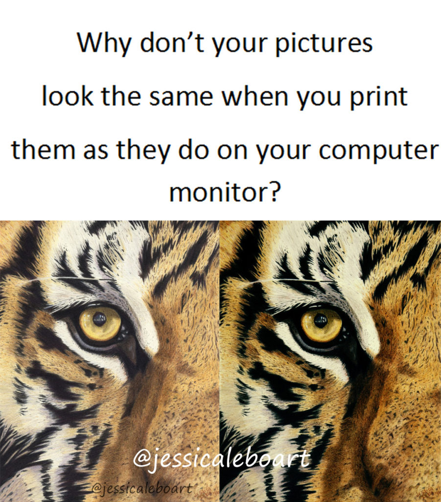 The importance of a good monitor. (Or why don't my printed pictures match what's on my monitor!) - Jessica Lebo Art